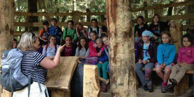 Lernen mitten in der Natur in der Waldschule